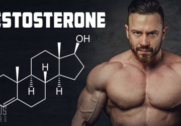 exogenous Testosterone