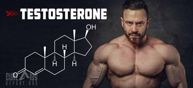 Testosterone - CureAidsReport org